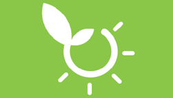 BIVEG - Aminoacidi vegetali