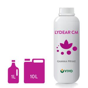 LYDEAR_CM